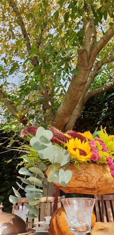 sonbahar bahçeleri