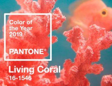 2019′ un Rengi Living Coral ile 30 İlham